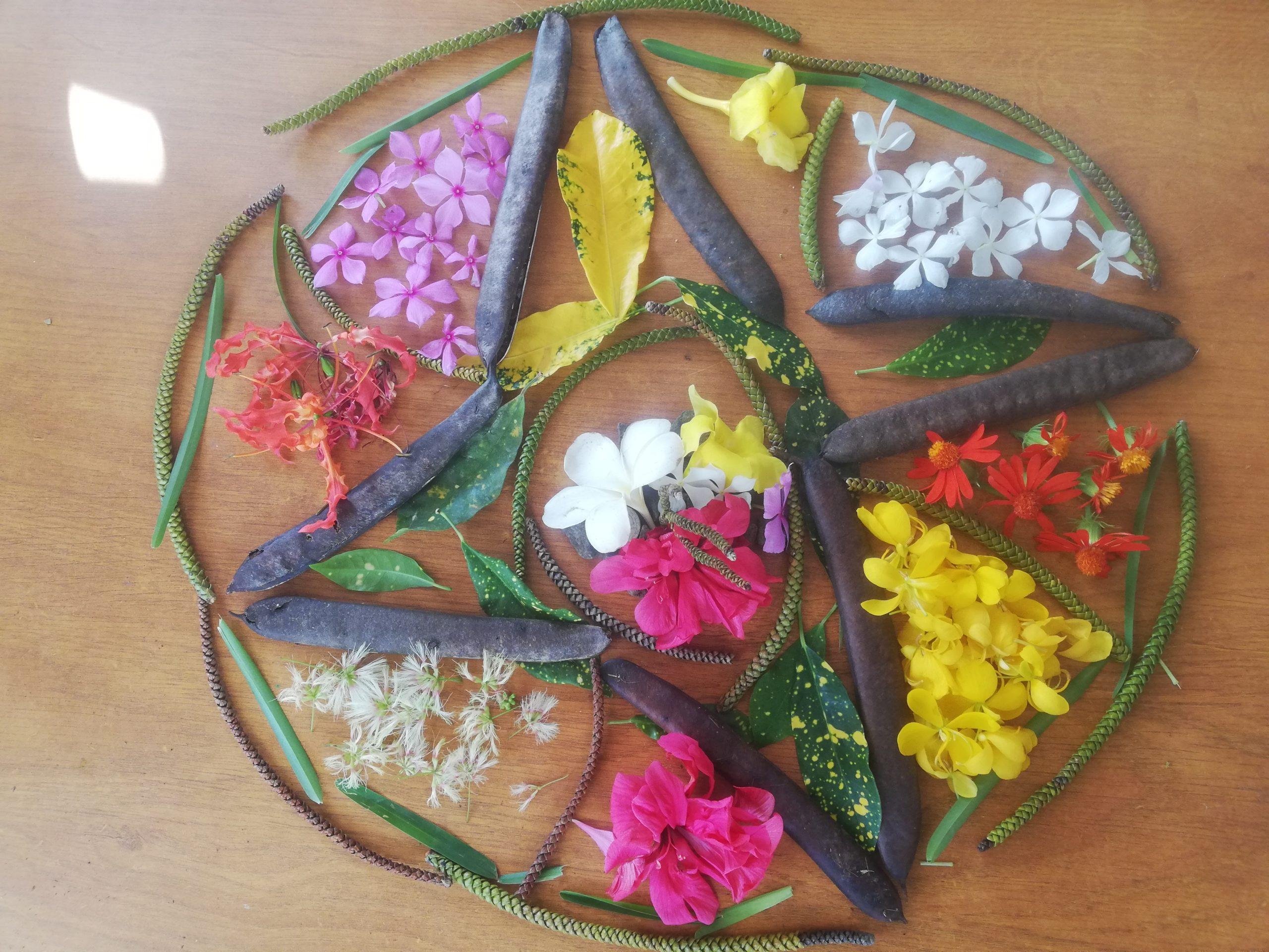 Mandala naturel